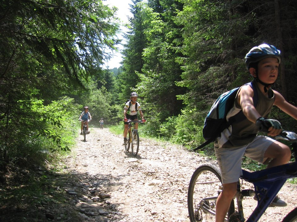 traseu montan cu bicileta la munte Cheile Cibinului